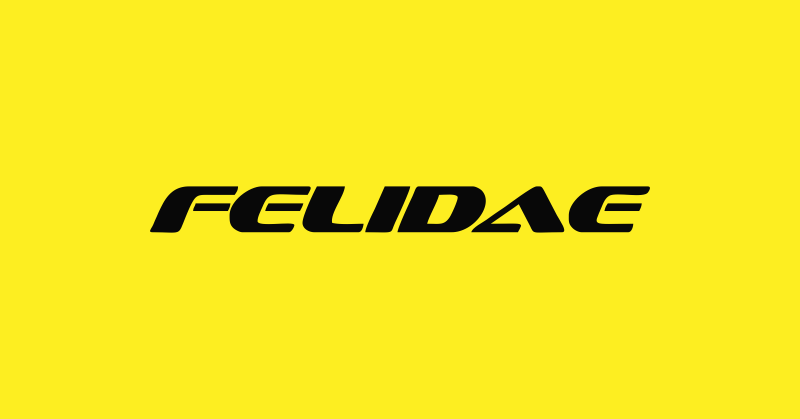 FELIDAE ELECTRIC | The Success Today | Success Today | www.thesuccesstoday.com